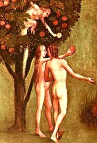 adam eve tree fruit